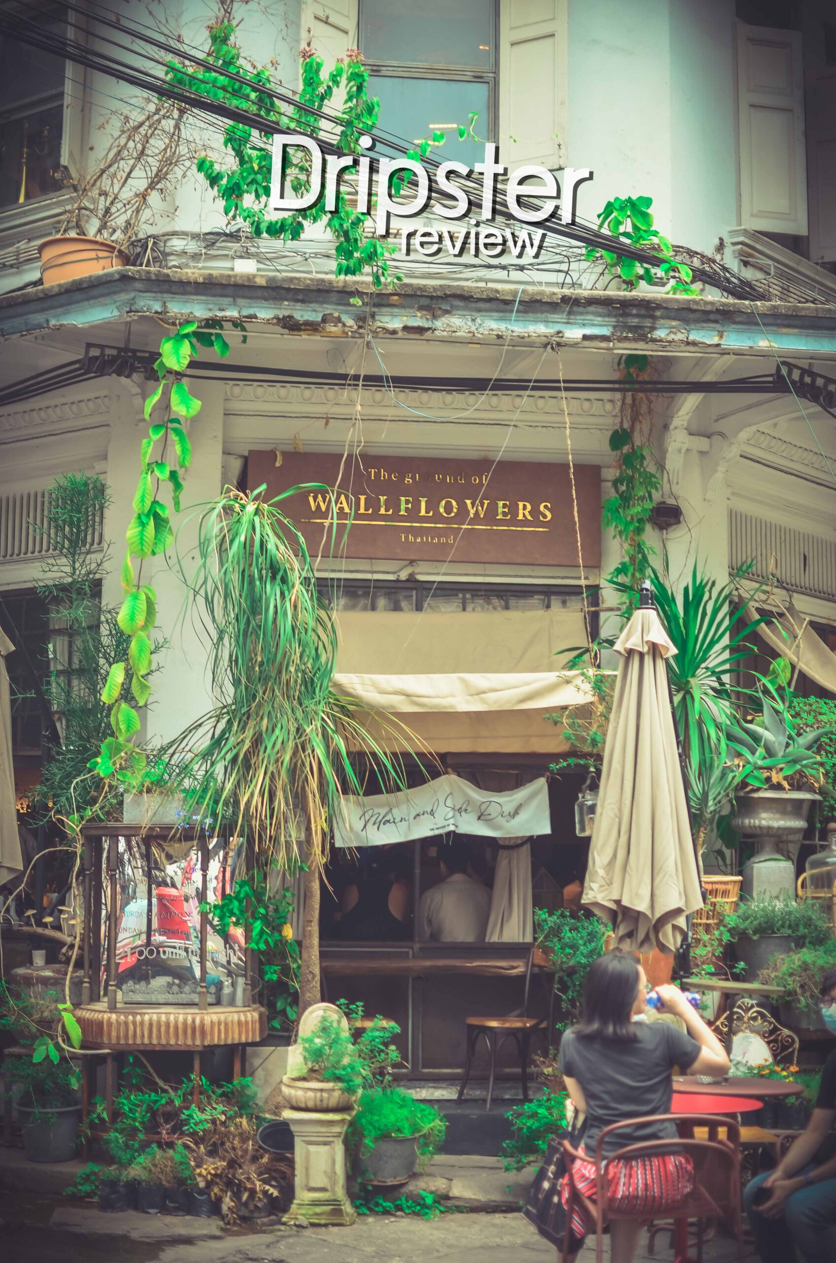 wall flower cafe