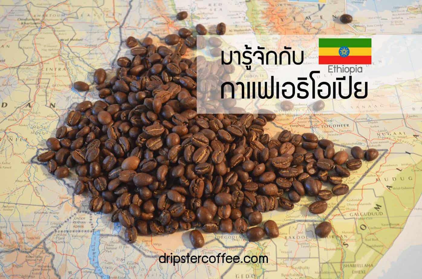 ethiopia Coffee กาแฟเอธิโอเปีย